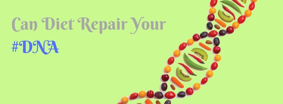 repair your dna through diet